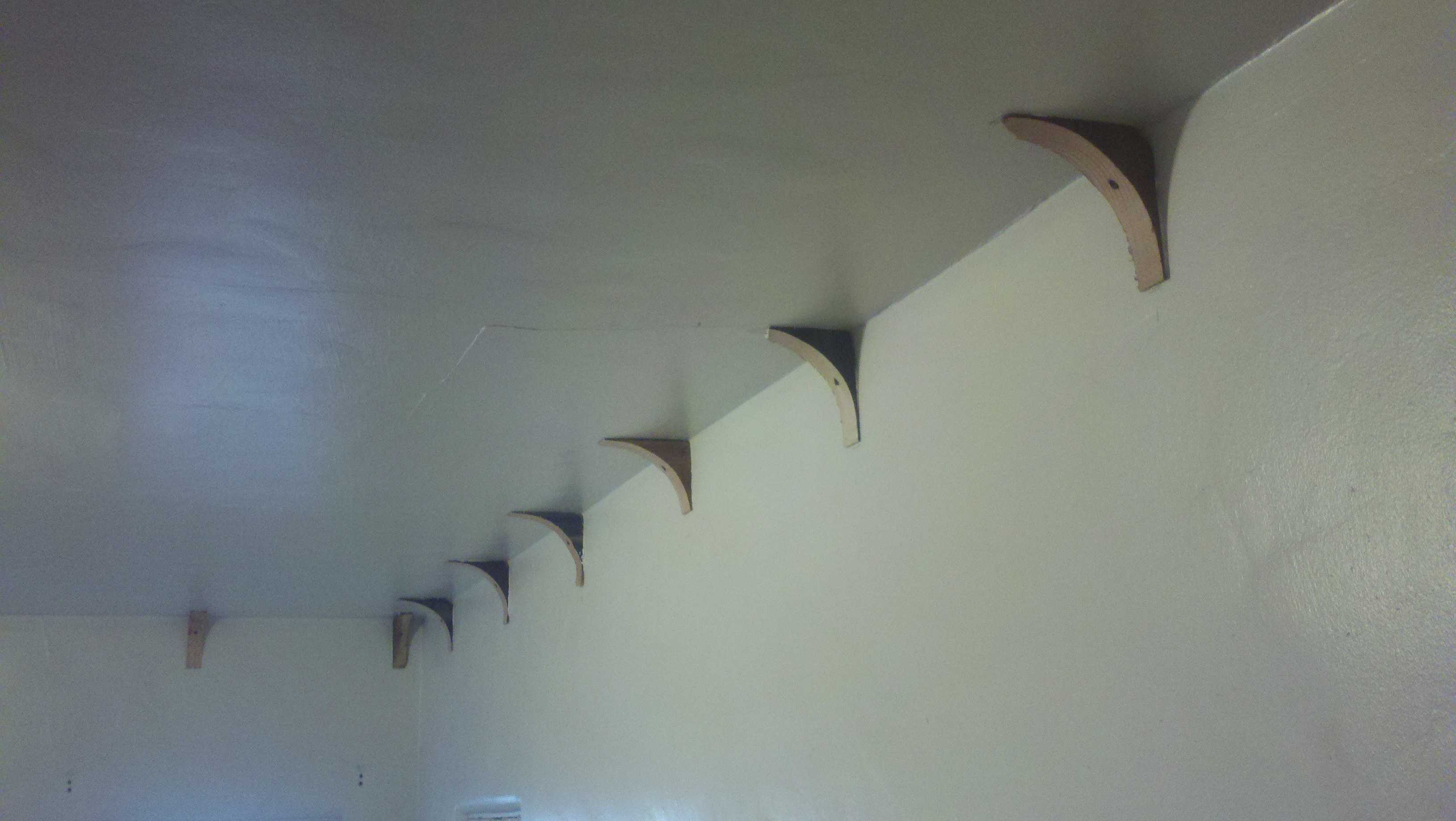 coved ceiling. awesome design coved ceiling ideas come with white